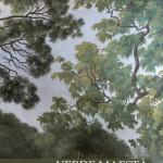 Presentazione libro Verde Maestà