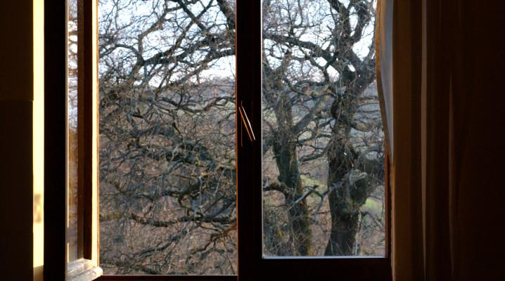 Foresteria finestra