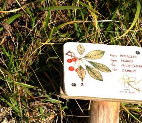 cea centro educazione ambientale l'arboreto