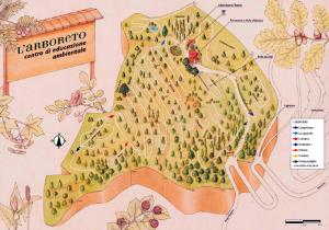 pianta parco | L'Arboreto Mondaino